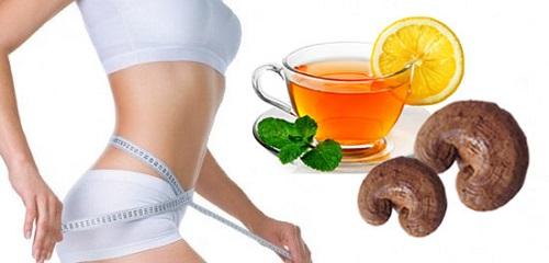 Công dụng nấm linh chi đỏ giúp giảm cân