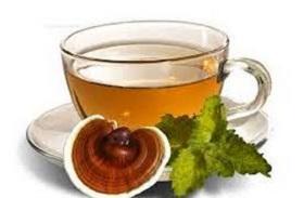 cách pha trà nấm linh chi