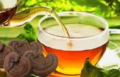 chế biến nấm linh chi thành trà
