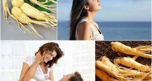 Tác dụng của nấm linh chi đối với sức khỏe của con người