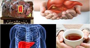 Nấm linh chi – bài thuốc quý cho người bệnh gan lâu năm