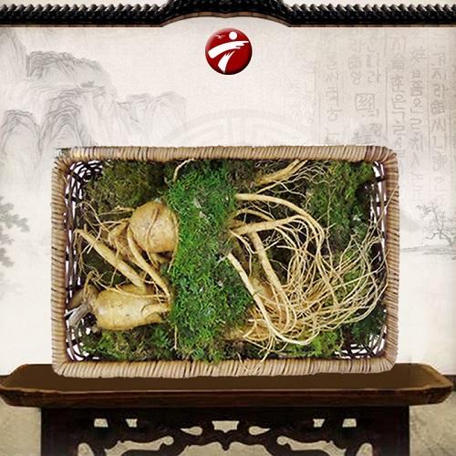 Nhan-sam-tuoi-han-quoc-2-cu-1kg