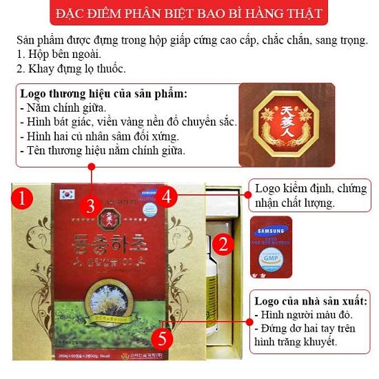 Dong-trung-ha-thao-con-nhong-500-1